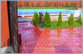 Covor epoxidic decorativ la exterior